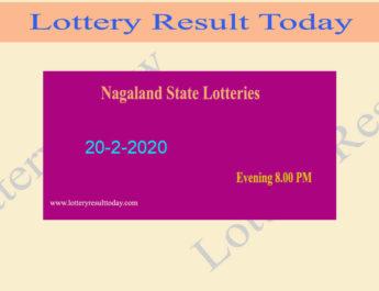 Nagaland Lottery Dear Falcon 20.2.2020 Result 8.00 PM - Lottery Sambad