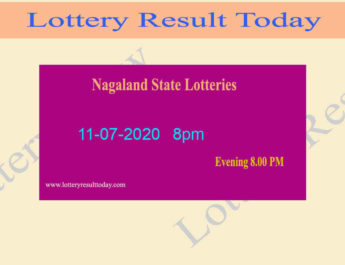 Nagaland State Lottery Dear Ostrich Result 11.07.2020 (8pm)