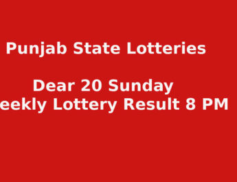 Punjab State Dear 20 Sunday Weekly Lottery Result
